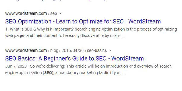 WordStream Google SERPs
