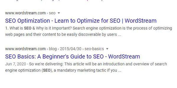 WordStream Google SERPs